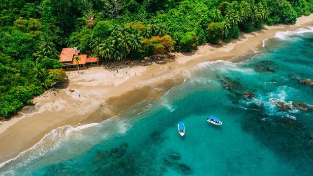 article; figaro, Costa Rica