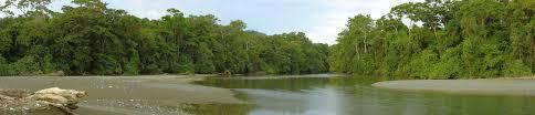 Parc du Corcovado