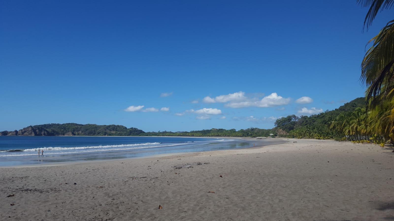 Plage sable fin ciel bleu cocotiers