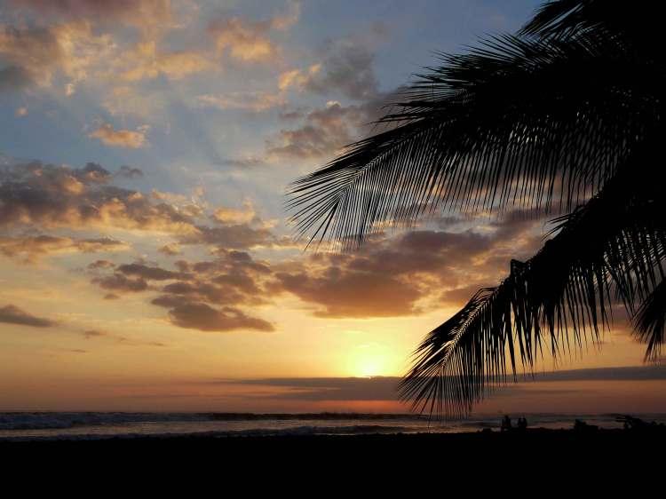 Plage merc palmier ciel bleu orange nuages soleil couchant